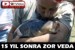15 yıldır evinde baktığı sazan balığını doğal ortama gözyaşlarıyla bıraktı