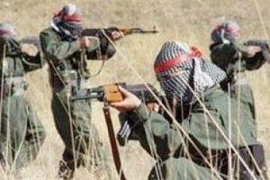 PKK'nın suikast timi çökertildi!
