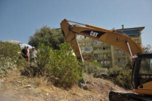 Mudanya'da ağaç için direniş