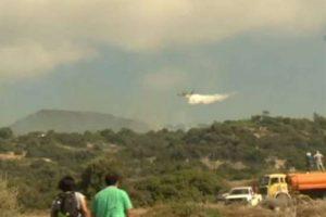 KKTC'de orman yangını