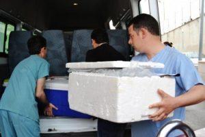 Türkiye canlıdan akciğer nakline hazırlanıyor