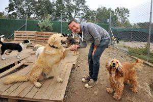 Bursa'da hayatını terk edilmiş köpeklere adadı