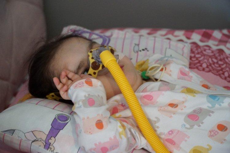 Bursa'da SMA hastası Didem için zaman daralıyor