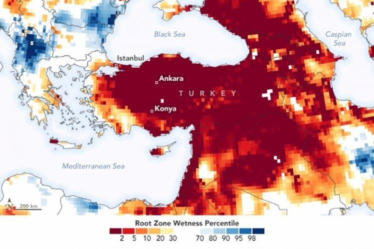 WWF'den kuraklık uyarısı: Bursa küresel yüksek risk listesinde
