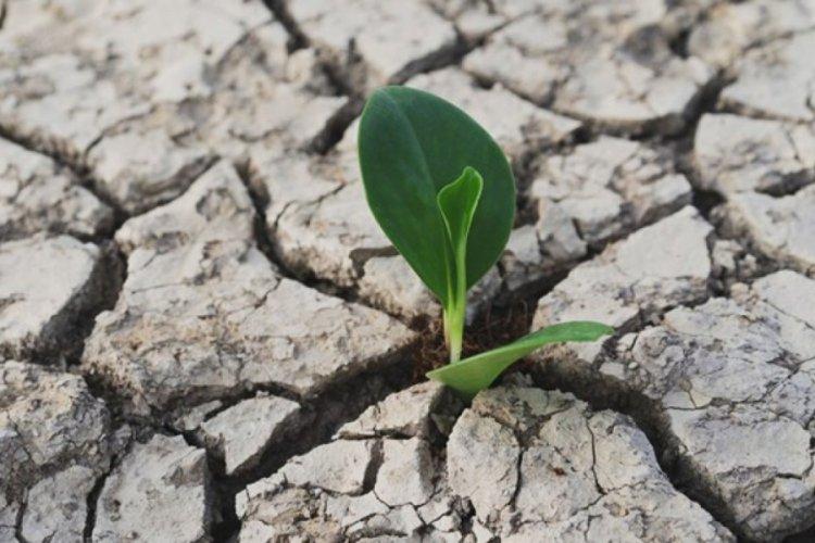 Meteoroloji'den 2020 için kuraklık raporu: Yağışlar ne kadar azaldı?
