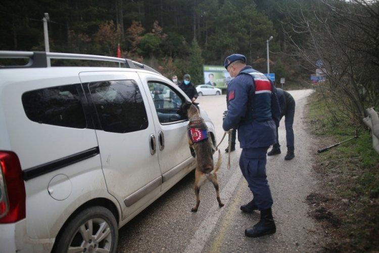 İhlâllerle gündeme gelen Bursa Uludağ'da denetimler sıklaştı