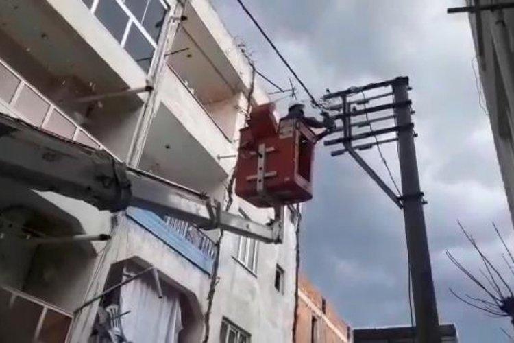 Bursa'da tellere takılan kuş UEDAŞ ekipleri tarafından kurtarıldı