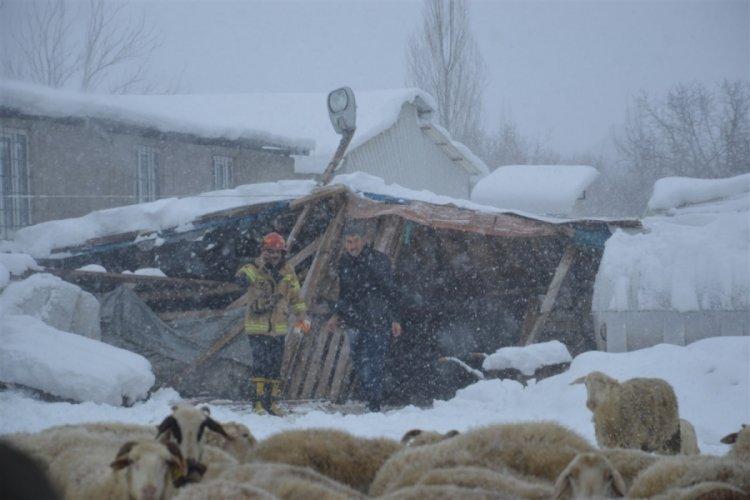 Bursa'da ahır göçtü, 150 koyun ve kuzu göçük altında kaldı