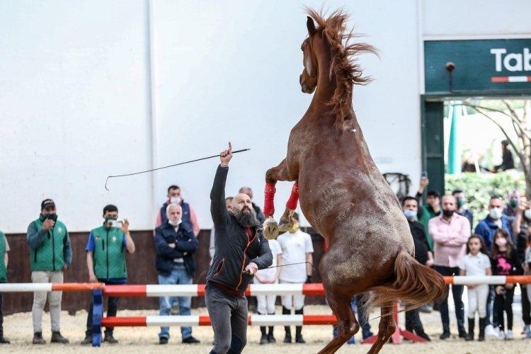"""Bursa'da Janbi Ceylan ile atı """"Kazbek""""in iletişimi görenleri şaşırtıyor"""