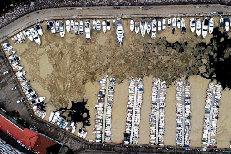Bursa'da deniz salyasıyla kaplanan Mudanya Yat Limanı, havadan görüntülendi