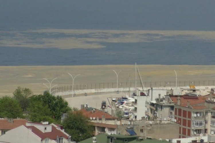 Uydudan Bursa sahillerini saran salya böyle görüntülendi