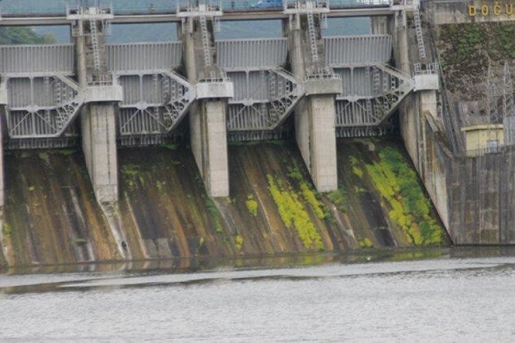 Baraj kapağını tamir ederken nehre düşen işçi hayatını kaybetti