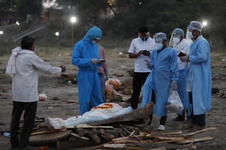 Hindistan'da ölümcül siyah mantar salgını