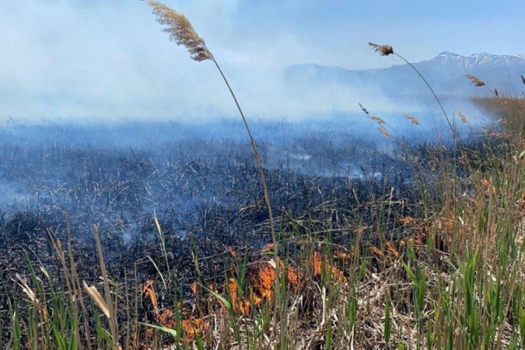 Eber Gölü'nde yangın