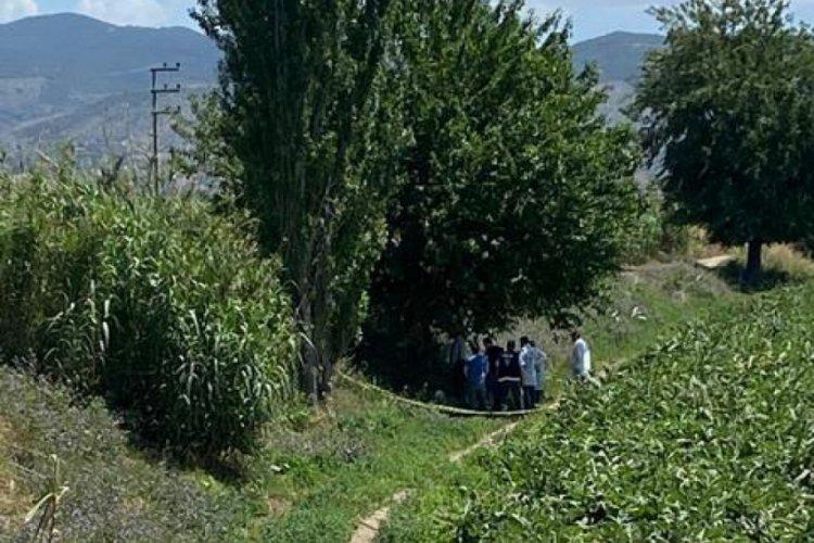 66 yaşındaki adam, not bırakıp dut ağacına kendini astı