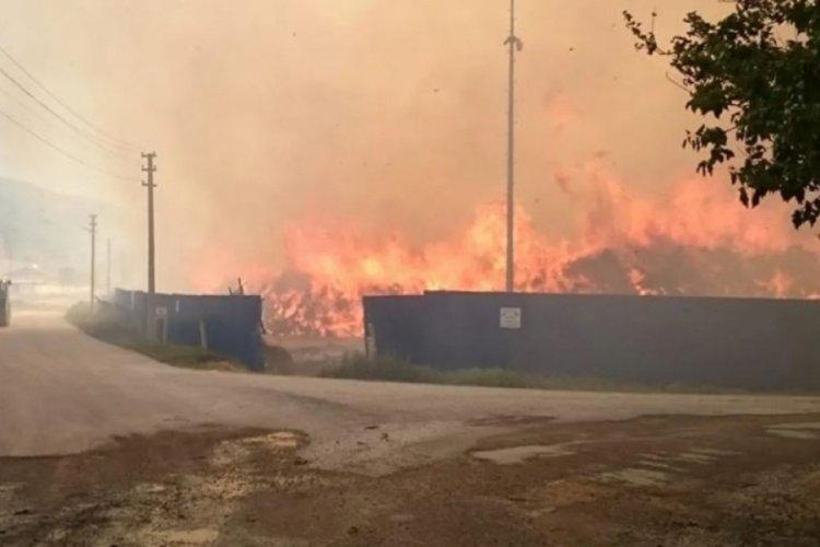 Afyonkarahisar'daki biyokütle enerji tesisinde yine yangın