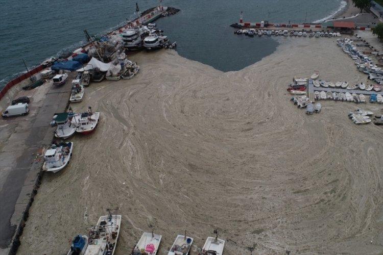 Lodos nedeniyle balıkçı barınağı kıyısı deniz salyasıyla kaplandı