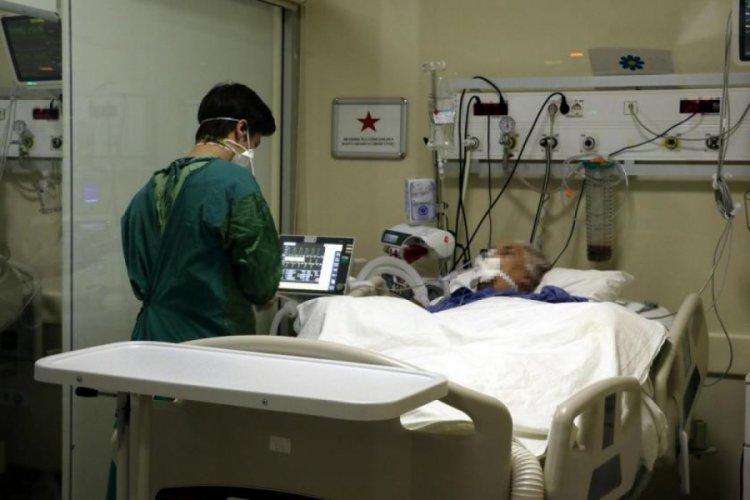 DSÖ: Kovid-19 kaynaklı küresel ölüm sayısı teyit edilenden 2 ila 3 kat fazla olabilir
