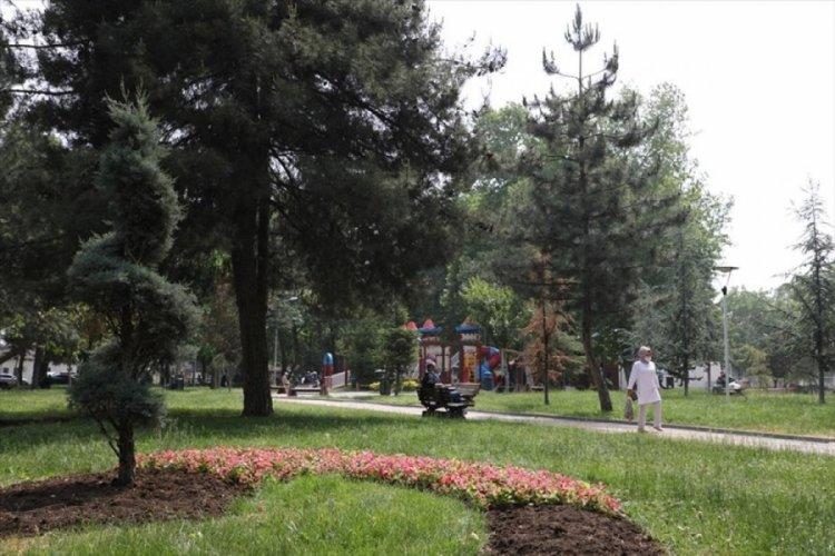 Bursa İnegöl'de cadde ve parklar çiçekleniyor