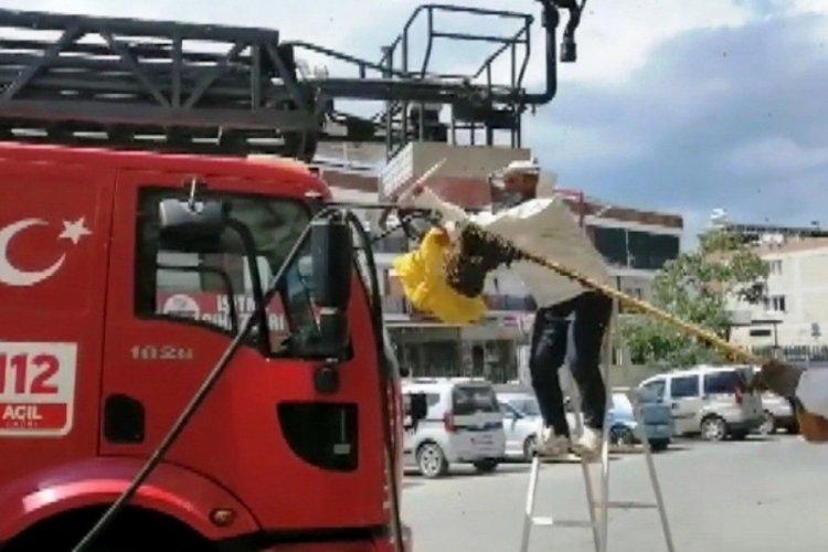 Aydın'da acil servisi arılar bastı