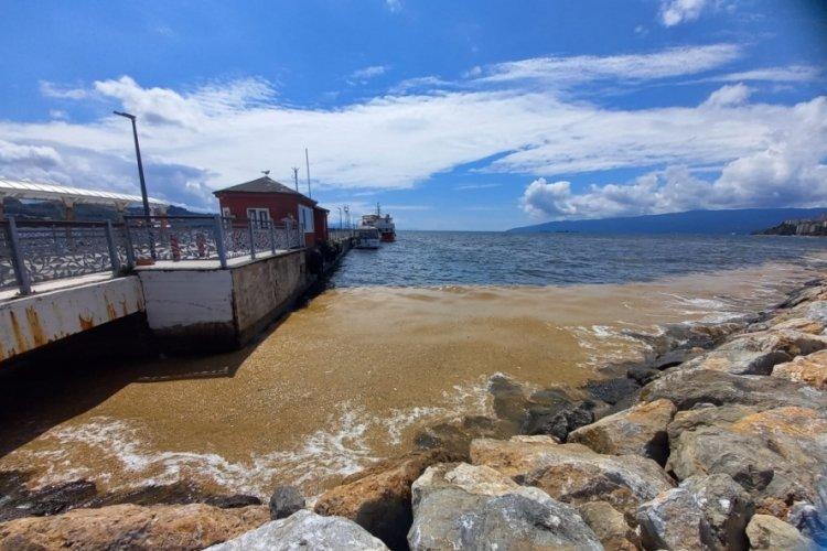 Bursa Gemlik Körfezi'nde deniz salyası kıyı bölgelerde yoğunlaştı