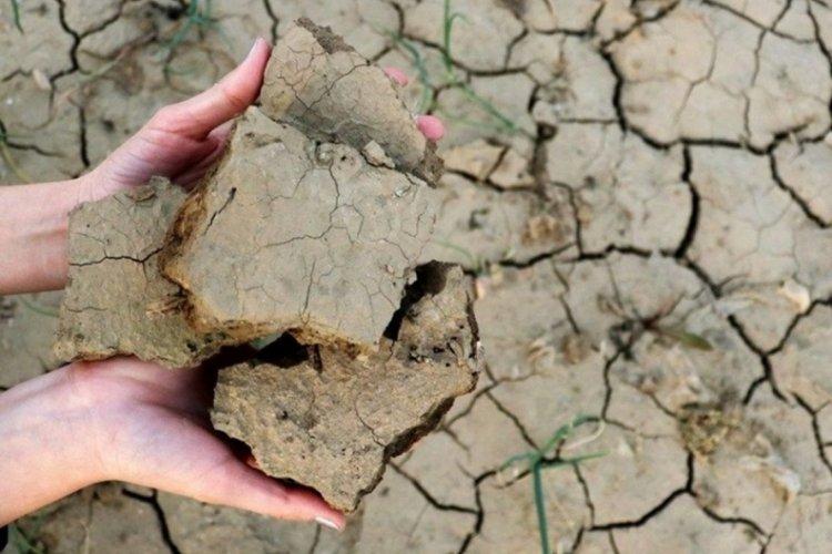 Türkiye kuraklık tehlikesiyle karşı karşıya! Peki, Bursa ne durumda? (ÖZEL HABER)