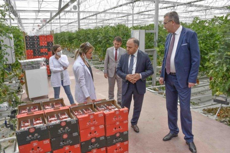 Bursa Karacabey Belediye Başkanı Özkan, TÜRKŞEKER'in Ankara'daki tesislerini inceledi