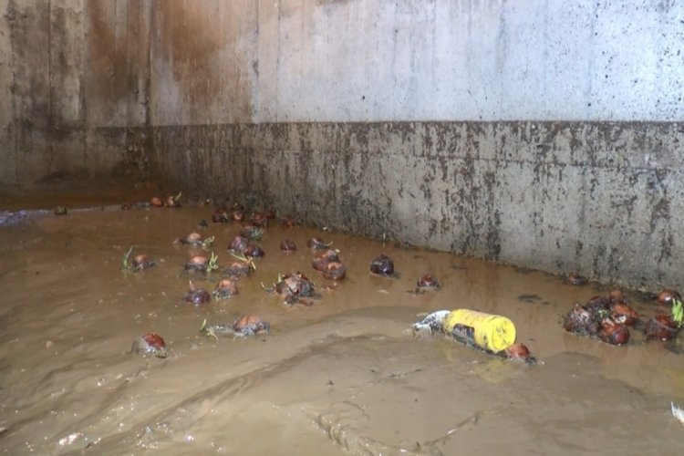 Bursa Mudanya'da sel sonrası temizlik çalışmaları sürüyor