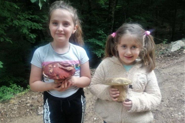Bursa'da ormandaki en güzel mantarı bulmak bu çocukların işi