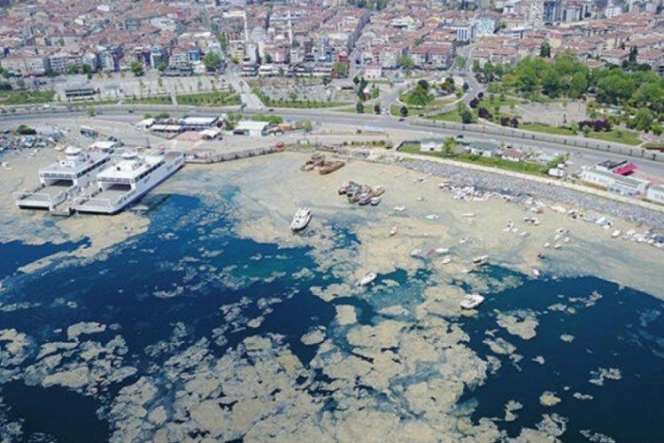 Kritik rapor yayınlandı: Müsilaj Adriyatik Denizi'nden Ege ve Marmara'ya uzandı!