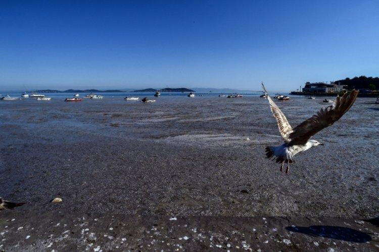 Deniz salyasının son hali havadan görüntülendi