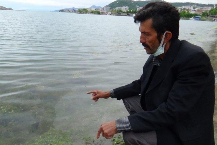 Müsilaj, Karadenizli balıkçıları endişelendiriyor