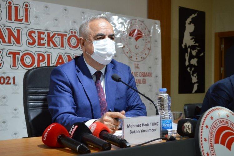 Bakan Yardımcısı Tunç: Dekar başı 100 liraya kadar hasar ödemesi yapılacak