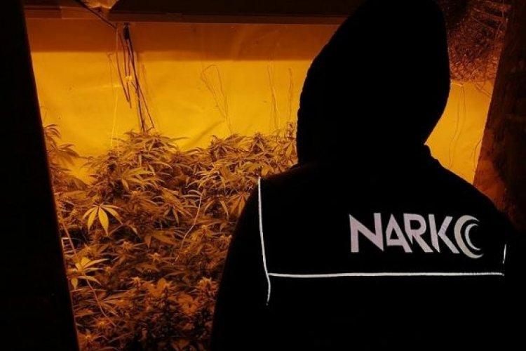 Uyuşturucu operasyonunda 3 tutuklama!