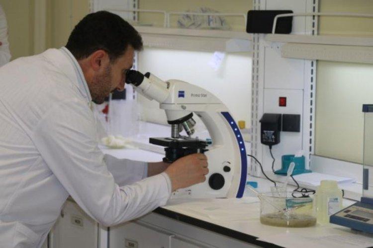 """Marmara Denizi'nde görülen müsilaja """"mikroalg"""" florası tespit edildi"""