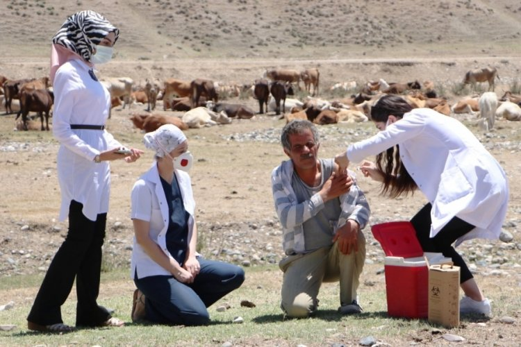 Dağları taşları aşarak, çobanların korona aşılarını yaptılar