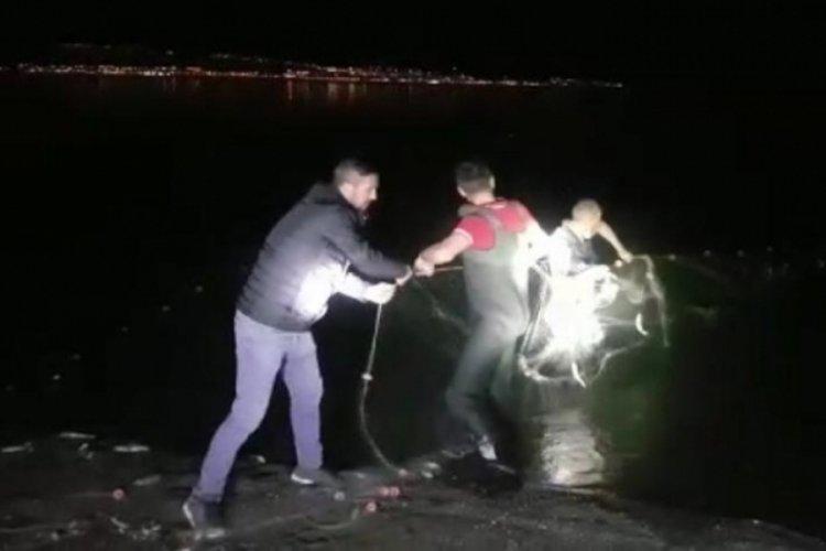 Van'da kaçak avlanan 2 ton 350 kilo inci kefali ele geçirildi
