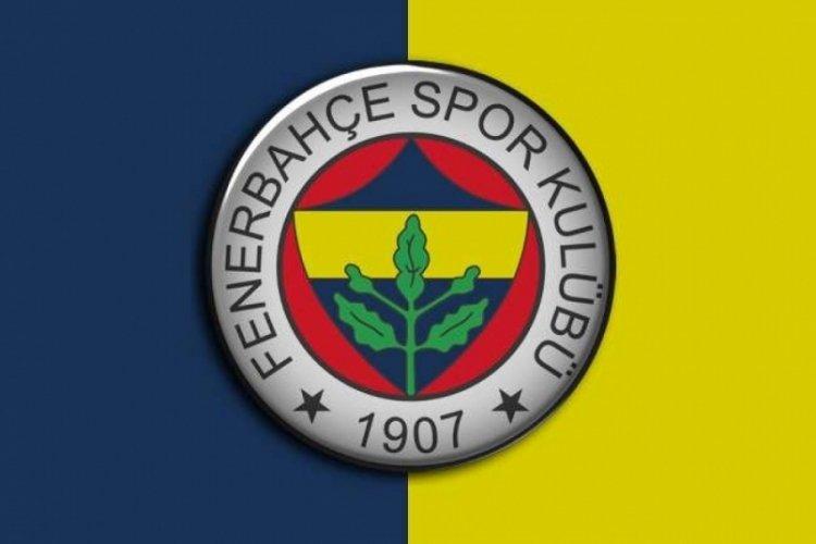 Shayok, Fenerbahçe'de