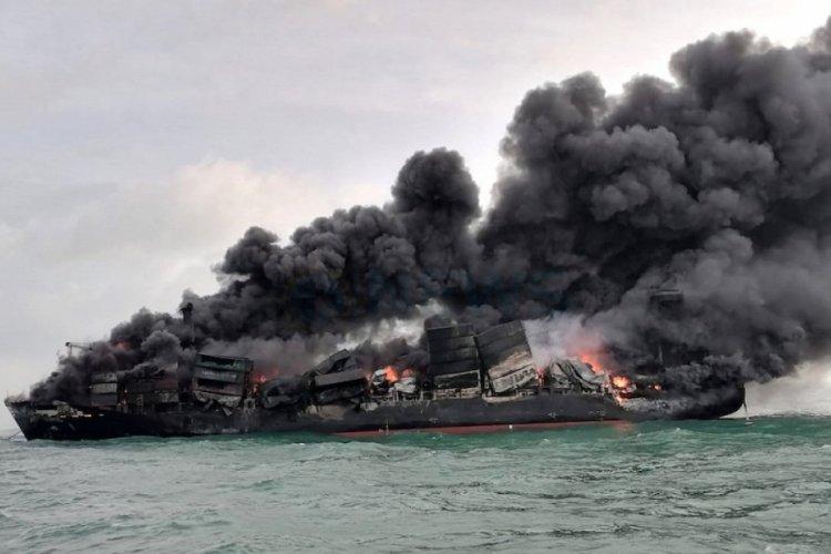 Sri Lanka'da gemi yangınından sonra çok sayıda ölü deniz canlısı karaya vurdu