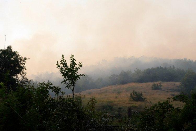 Bingöl'de 2 hafta arayla aynı bölgede yangın çıktı