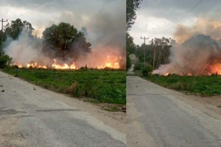 Devrilen ağaçlar, elektrik tellerinden yangın çıkardı
