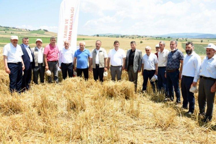 Bursa Yenişehir'de dijital tarıma ilk adım
