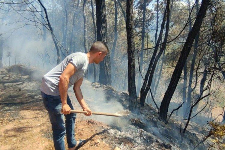 Osmaniye'de orman yangını: Yerleşim yerleri tahliye edildi