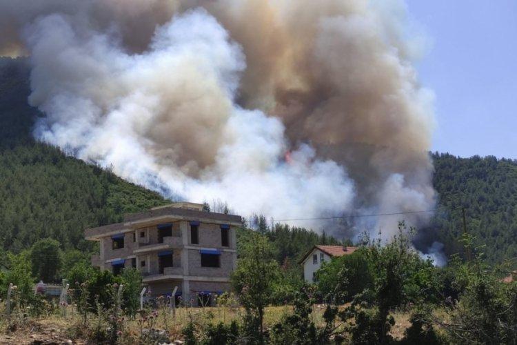 Denizli'de ormanlık alanda yangın