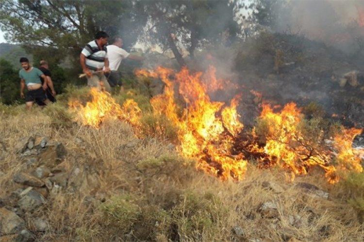 Fehiye'deki orman yangını söndürüldü