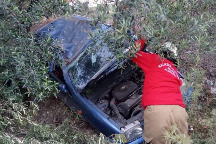 Yoldan çıkan otomobil zeytin bahçesine daldı