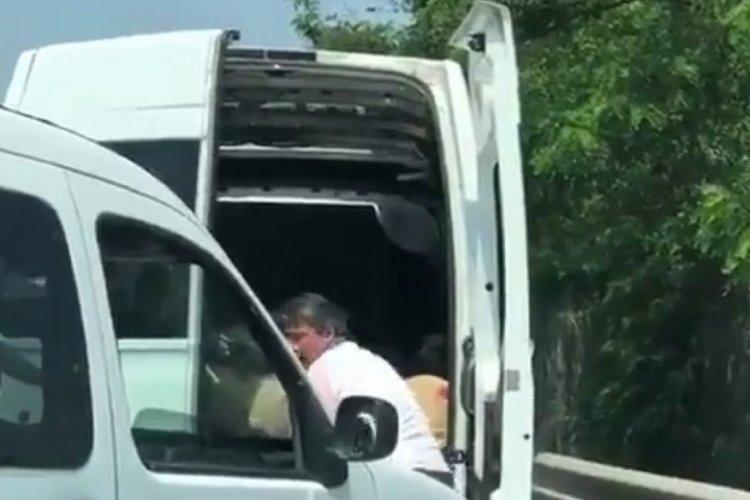Onlarca koyunu kapalı bagajda havasız bırakarak taşıdı