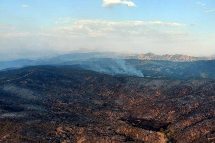 Bingöl Valiliği: 4 gün süren orman yangını kontrol altına alındı