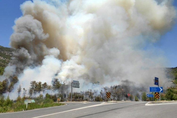 Orman yangını çıktı, karayolu ulaşıma kapatıldı
