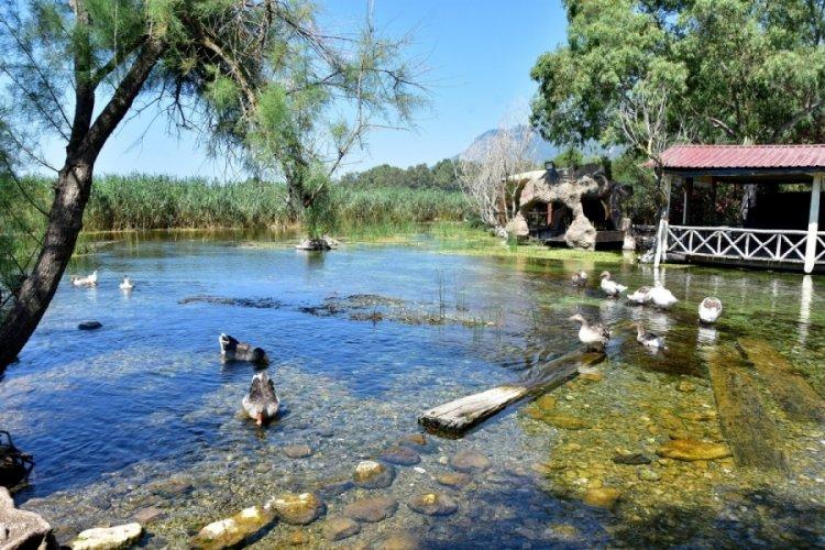 Kadın Azmağı'nda su seviyesi azaldı, insan girişi yasaklandı